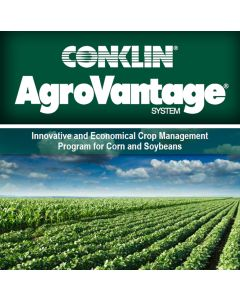 Corn & Soybean Trifold Brochure