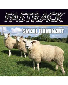 Fastrack® Small Ruminant Tri-fold Brochure